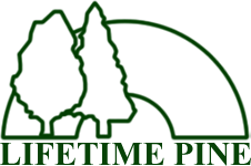 Lifetime Pine